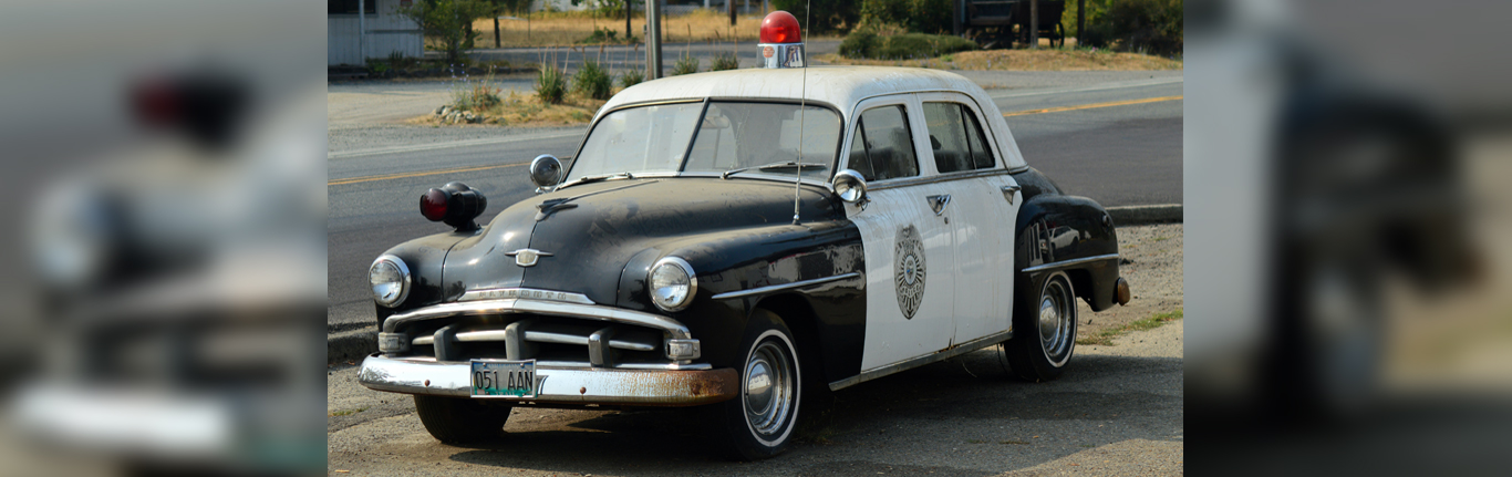 Police Car with lights.