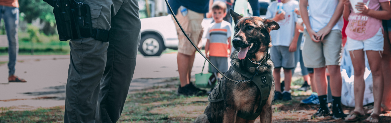 SWAT Tactical Gear.